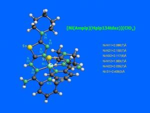 2_apositiva16_JPG1