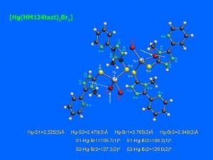 2_apositiva5_JPG1
