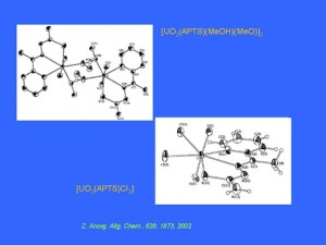 3_apositiva23_JPG[1]