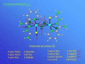 5_apositiva14_JPG[1]